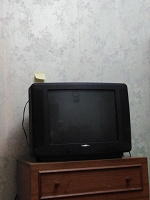 Отдается в дар Телевизор