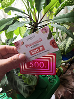 Отдается в дар По 500 рублей