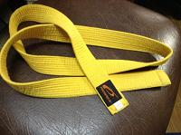 Отдается в дар Желтый пояс 160 см