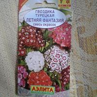 Отдается в дар Гвоздика турецкая Семена