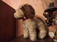 Отдается в дар Мягкая собака-игрушка