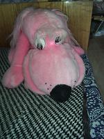 Отдается в дар Собака розовая большая
