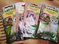Отдается в дар Трава для кошек