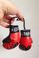 Отдается в дар Перчатки боксёрские сувенирные на рукоделие