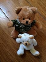 Отдается в дар Медведи