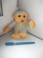 Отдается в дар Очаровательная обезьянка