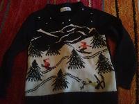 Отдается в дар Детский свитер и шорты на 110 см