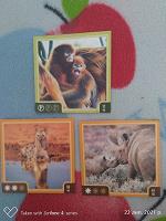 Отдается в дар Карточки с животными и магниты