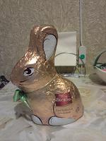 Отдается в дар Шоколадный заяц