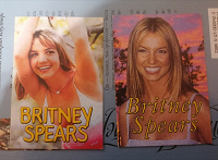 Отдается в дар Календарики с Бритни Спирс