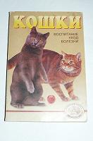 Отдается в дар Книга про кошек