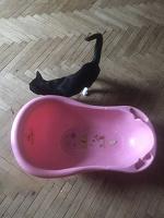 Отдается в дар Детская ванна / ванночка для купания