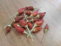 Отдается в дар Семена острого перца