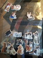 Отдается в дар Объемные наклейки с котятами