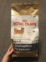 Отдается в дар корм сухой для собак мелких пород — 2шт