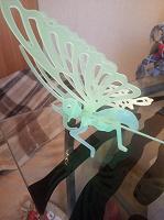 Отдается в дар Разборная модель бабочки