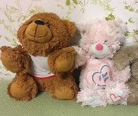 Отдается в дар Плюшевые медведи