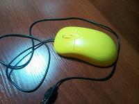 Мышь компьютерная…
