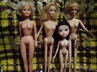 Отдается в дар Куклы барбиобразные