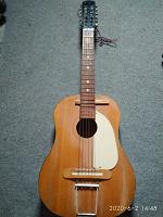 Отдается в дар Гитара 12 струн
