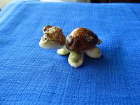 Отдается в дар Черепаха из ракушек