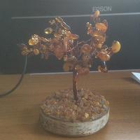 Отдается в дар Янтарное дерево