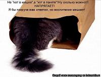 Отдается в дар Бижутерный «кот в мешке»
