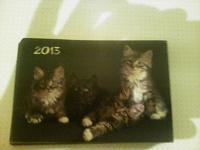 Отдается в дар Календарики, фишки, календарь-плакат «Мятежный путь»