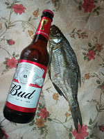 Отдается в дар Пиво и рыбка