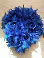 Отдается в дар Боа, синие перья