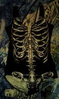 Отдается в дар купальник Скелет