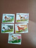 Отдается в дар Марки Куба