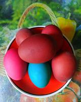Отдается в дар Яйца к Пасхе