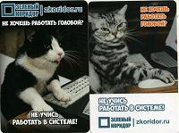Отдается в дар каленДАРики. нестандартные.коты