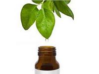 Отдается в дар Косметика для любителей чайного дерева