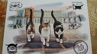 Отдается в дар Открытка с кошками