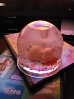 Отдается в дар «Снежный шар»