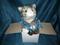 Отдается в дар Бижутерия(кот в мешке)