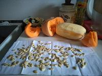 Отдается в дар Семена жёлтого кабачка