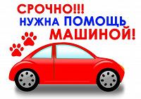 Отдается в дар Помощь на автомобиле
