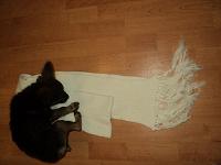 Отдается в дар шарф белый с кистями