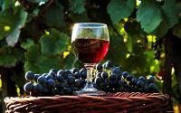 Отдается в дар Домашнее вино