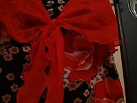 Отдается в дар Яркий топик с алыми розами
