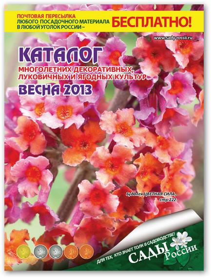 выбрать цветы россии челябинск каталог официальный сайт рулем машины девушка