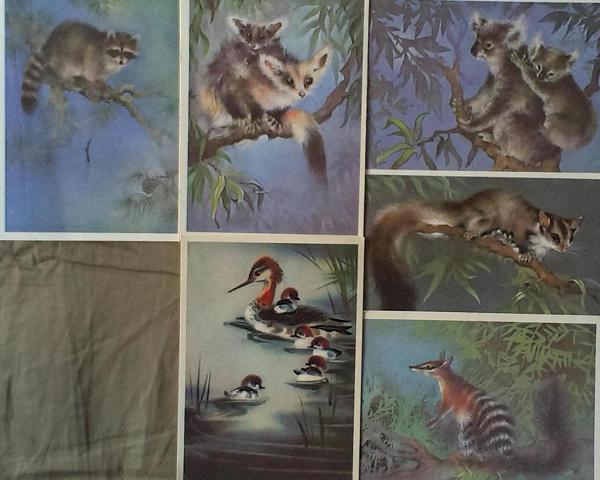 Днем рождения, наборы открыток ссср фауна