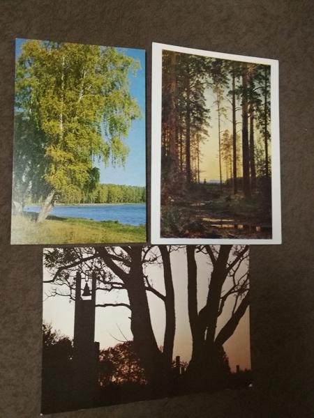 Днем рождения, открытки с природой ссср
